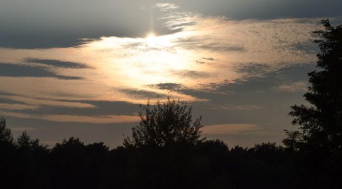 Abends auf dem Truppenübungsplatz in Speyer